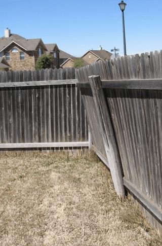 dividing fence repair
